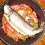 Bourgondisch eten bij hotel camping Sur Yonne in de Morvan